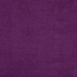 Milton 10 Violet