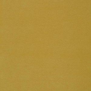 Penta 12 Yellow